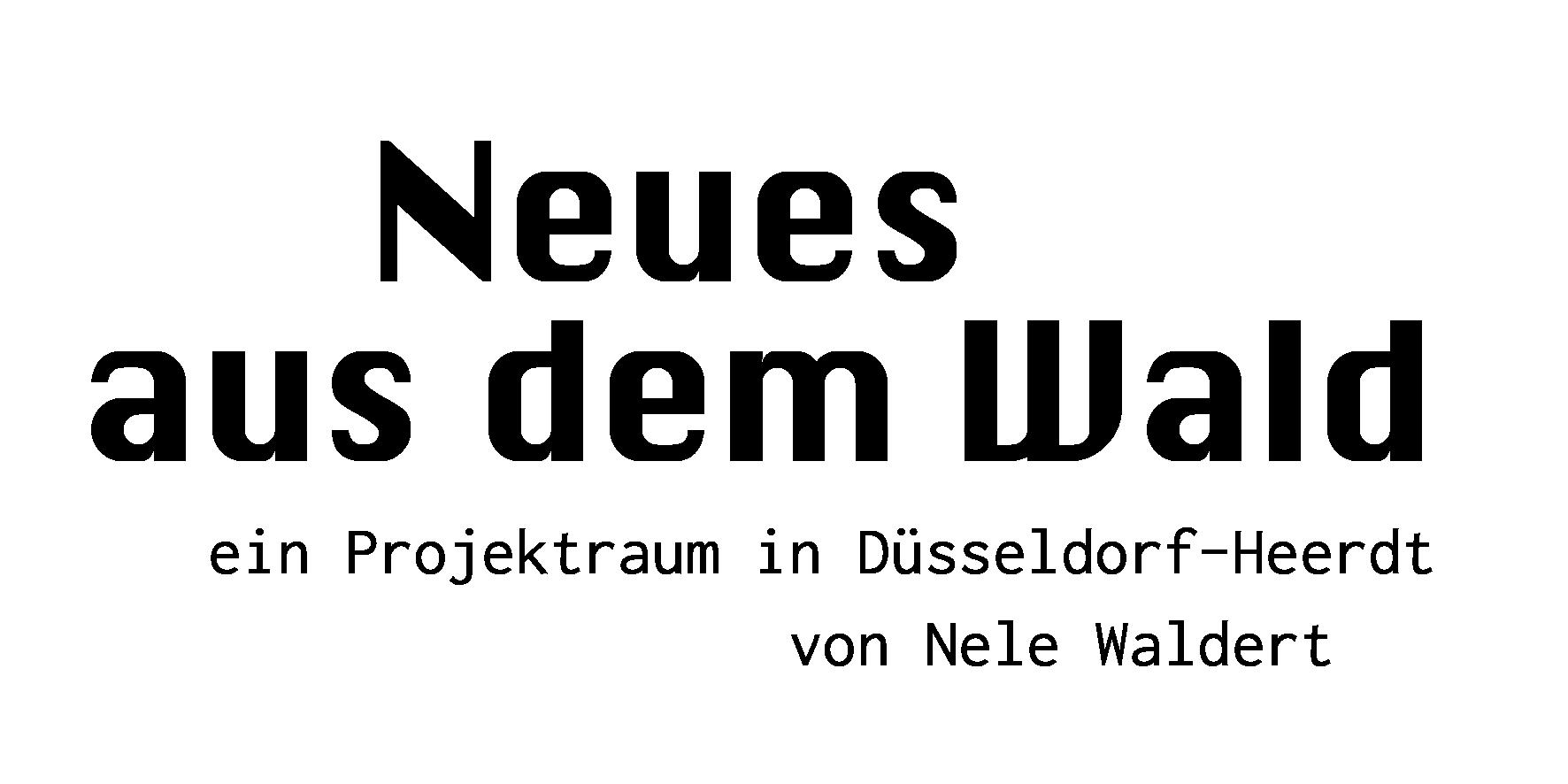 Der Projektraum von Nele Waldert